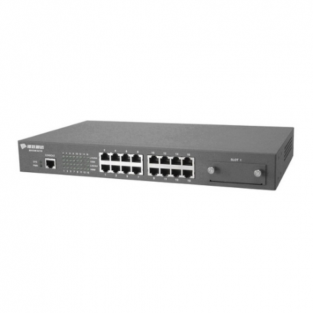 16 port Fast Ethernet Switch L2 slot extension